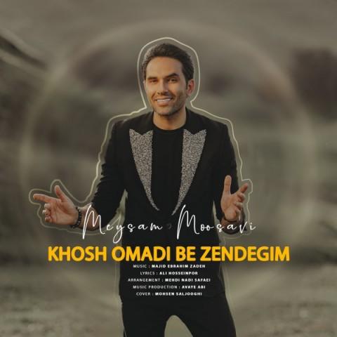 دانلود آهنگ میثم موسوی خوش اومدی به زندگیم