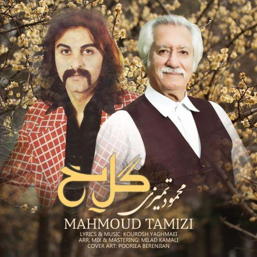 دانلود آهنگ محمود تمیزی گل یخ